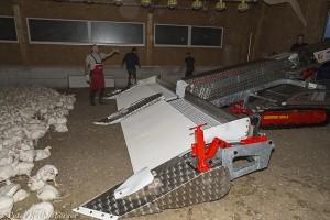 Pouletverlademaschine ausgebreitet im Stall bereit zum Verlad